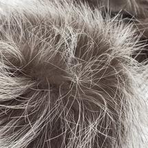 Манжеты женские  Цвет:серый Артикул:0164071 2