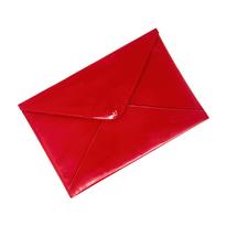 Папка для документов  Цвет:красный Артикул:0166141 1